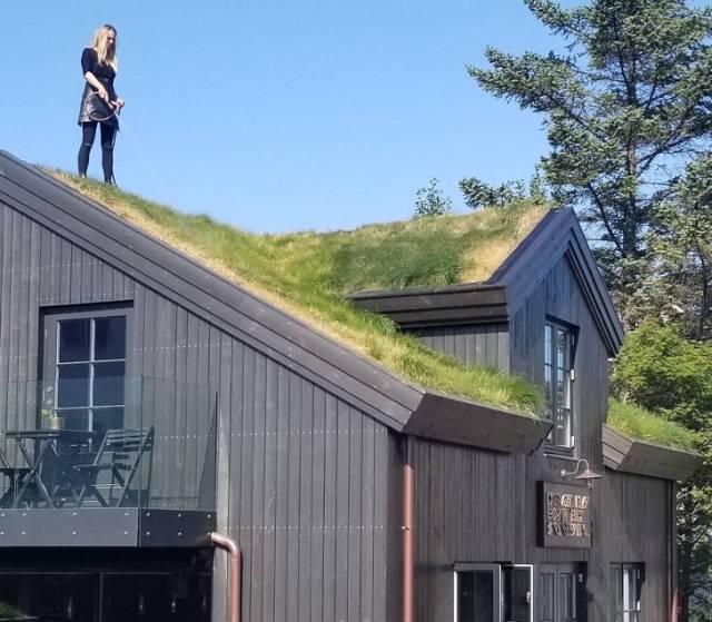 Потрясающая Исландия: 10 любопытных фактов, которые тебя удивят интересное