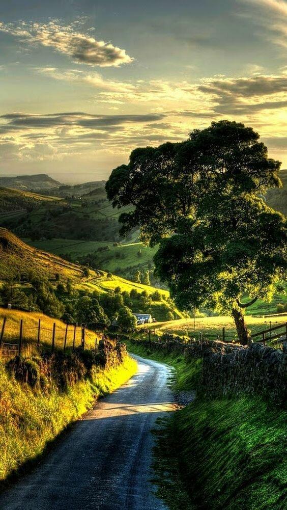 Окинуть взглядом весь простор дороги, какой большой мир, красота, умиротворение, фотомир