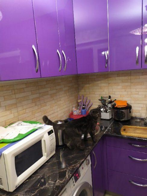 Яркий фиолетовый цвет шкафчиков и ящиков моментально бросается в глаза