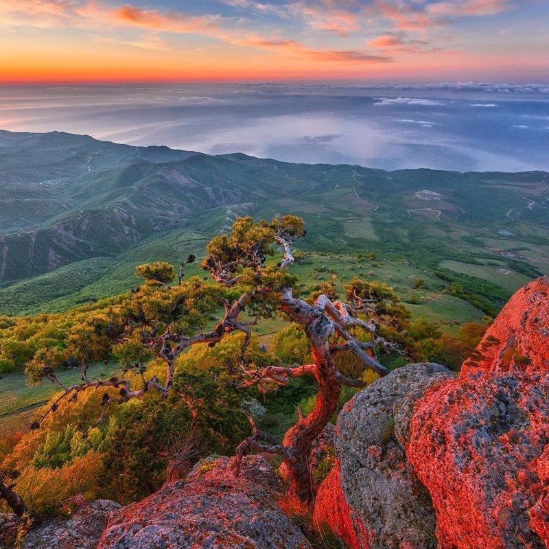 Утро на Южной Демерджи, Крым горы, леса, природа, природа России, российская природа, россия