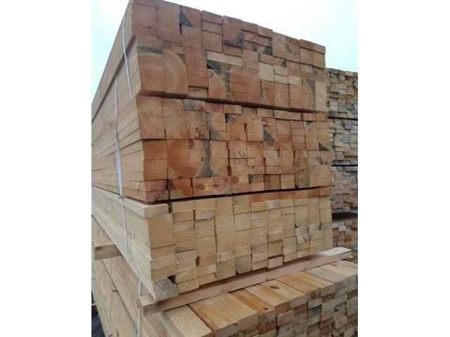 От запретов в лесу лучше не станет: как ограничивать экспорт древесины россия