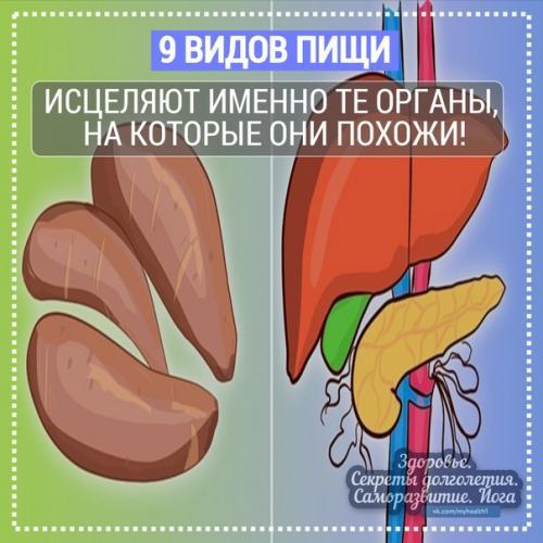 Эти 9 видов пищи исцеляют именно те органы, на которые они похожи!