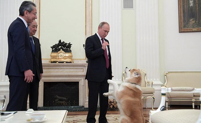 Путин — «собачник» со стажем