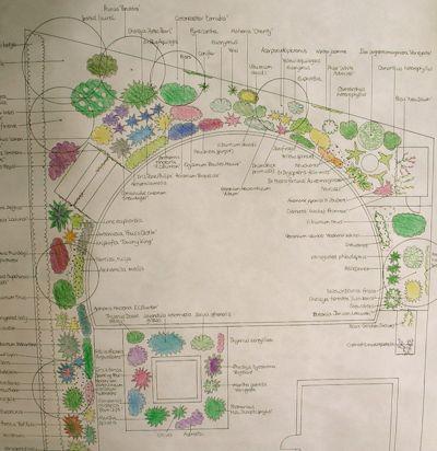 Кантри План участка by Jane Harries Garden Designs