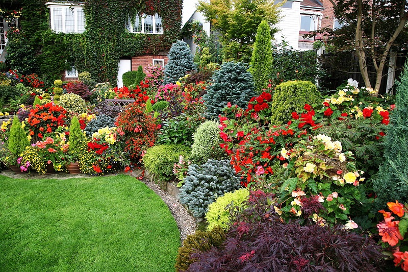 сад для ленивых