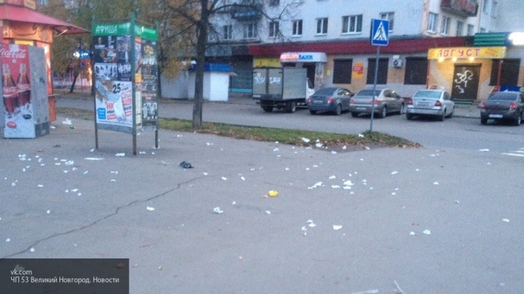 Жители Великого Новгорода жалуются на мусор и грубых дворников