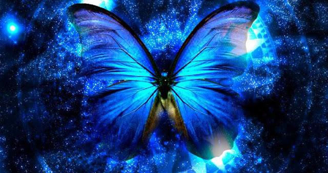 Пять посланий, которые Вселенная отправляет вам через бабочек!