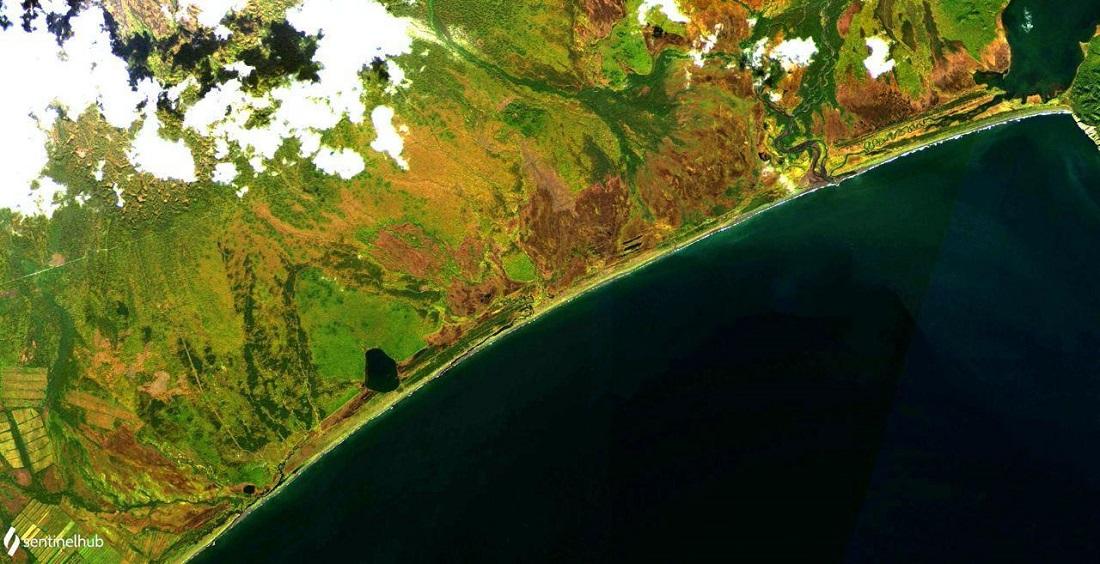 Экологическая катастрофа на Камчатке камчатка,катастрофа,россия,экология