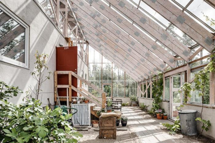 Лето круглый год: уникальный дом внутри оранжереи