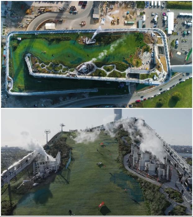 «Живая» крыша добавила биологического разнообразия в промышленную зону (Amager Bakke, Копенгаген).