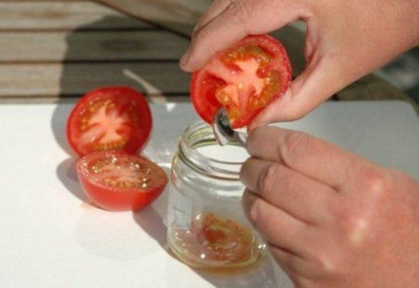 Как лучше собирать и хранить семена помидоров. Дачники делятся опытом.