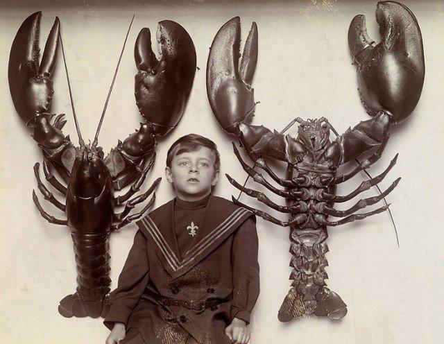 Мальчик между двумя лобстерами, выловленными у побережья Нью-Джерси. 1916 год. история, ретро, фотографии