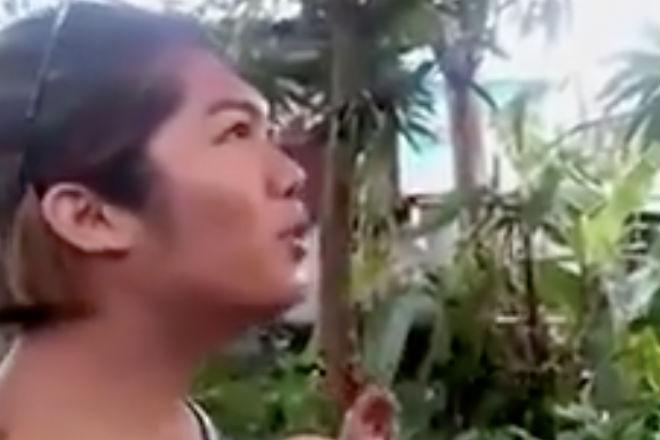 Семерых одним махом: как ловят комаров в Таиланде