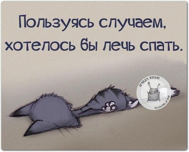 Смешные картинки про хочу спать