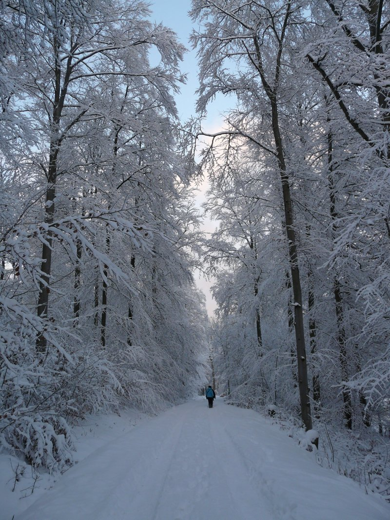 Полезные советы для туристов длиннопост, зима, интересно, поход, путешествие, туризм