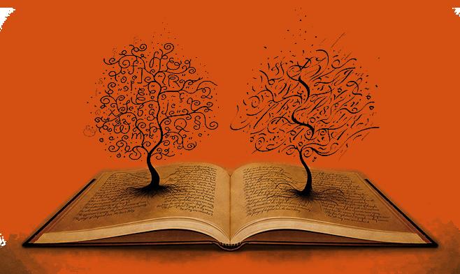 Интересные факты о лингвистике