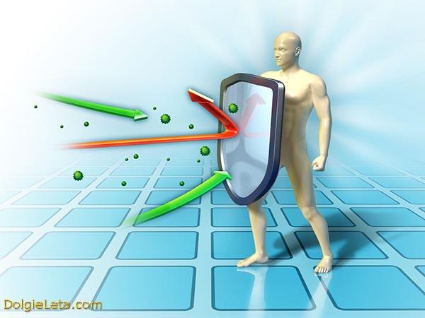 Способ восстановления всей иммунной системы за 72 часа