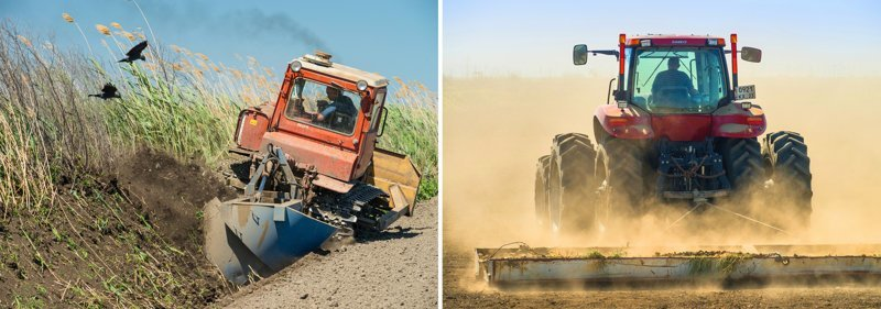 Как выращивают рис в России Сельское хозяйство России, производство, рис