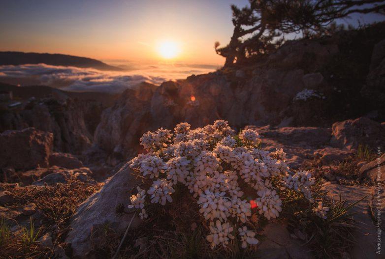 За границей облаков: гора Ай-Петри, Крым АЙ ПЕТРИ,Крым,отдых,турист