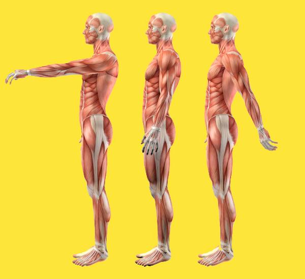Правка осанки: что делать, чтобы позвонки не смещались здоровье,осанка,спина