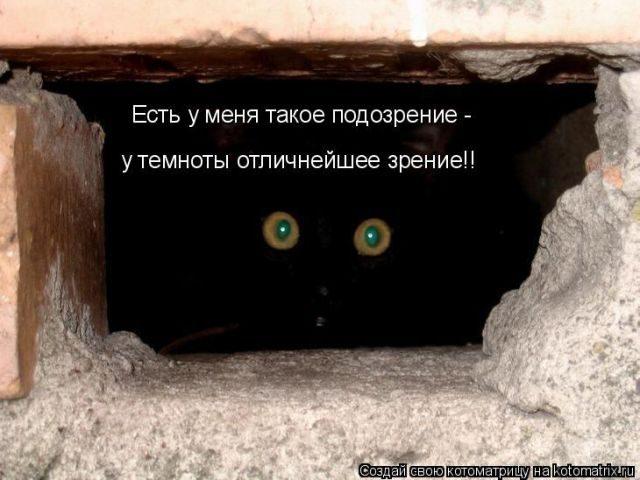 Самые крутые котоматрицы))