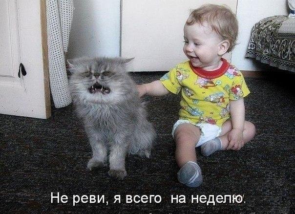 Утешил :-)