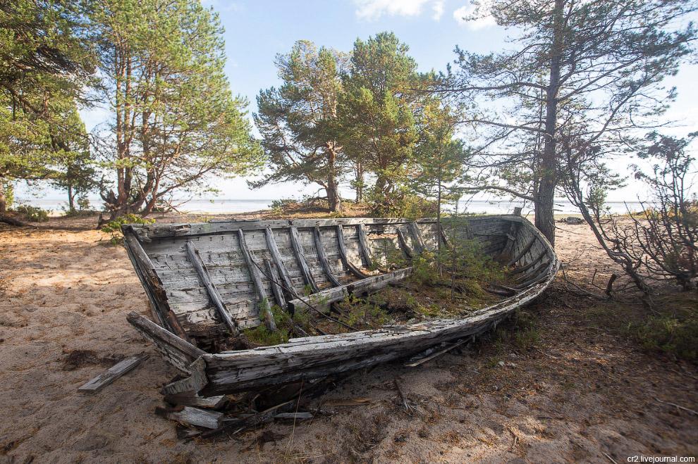 «Кладбище карбасов» на берегу Белого моря