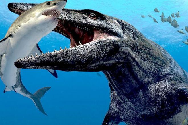 Мозазавр: подводный монстр, который охотился на мегалодонов