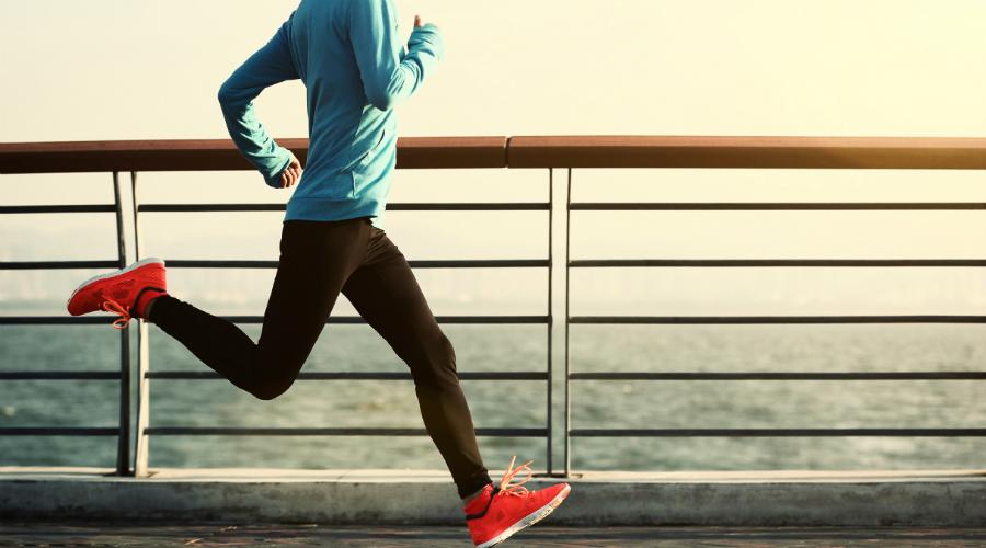 Упражнения для вашего тела, согласно ученым Гарварда