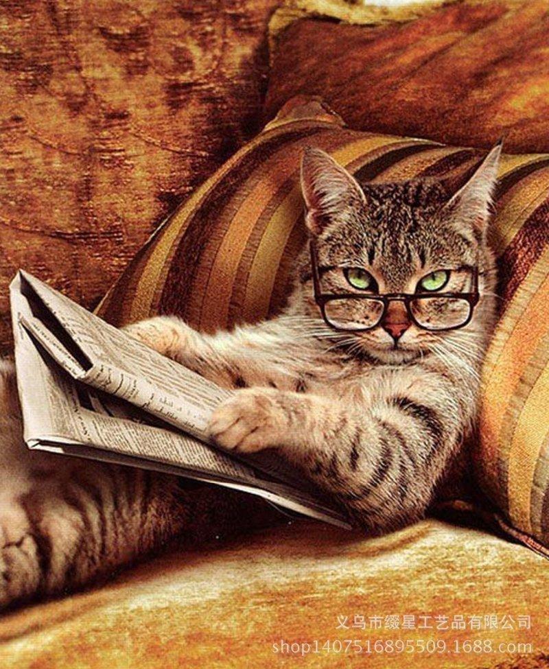 """Ð""""Ð¾Ð±Ñ€Ð°Ñ Ð¸ÑÑ'Ð¾Ñ€Ð¸Ñ Ð¿Ñ€Ð¾ кошку Ð¡Ð¡Ð¡Ð , животные, иÑториÑ, коты"""