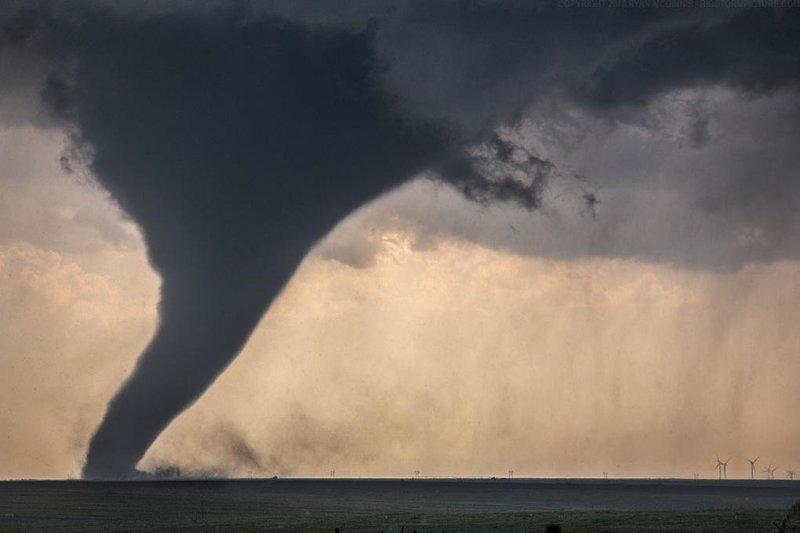7. Торнадо в сравнении с ветряными мельницами. Они в правом нижнем углу, если что в мире, животные, люди, размер, разница, фото