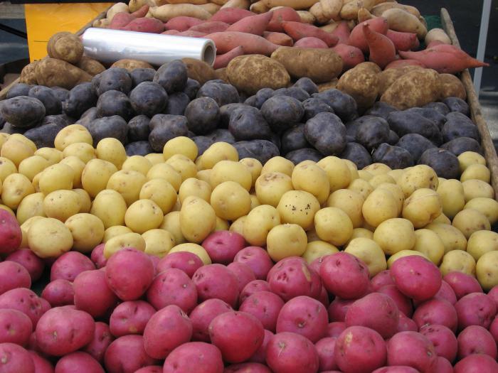 Популярные сорта картофеля. Описание сортов