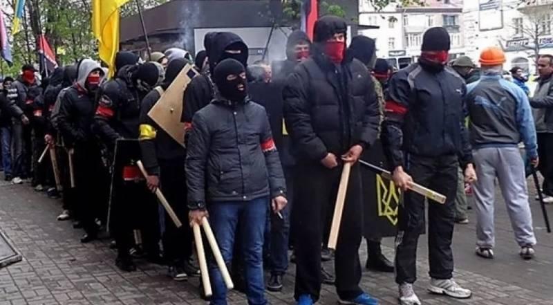 Насколько самостоятельны украинские националистические радикалы? украина