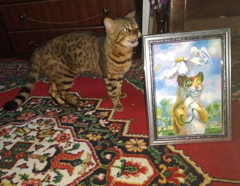 Картину толкнём? кот, коты, опасный кот, прикол, суровый