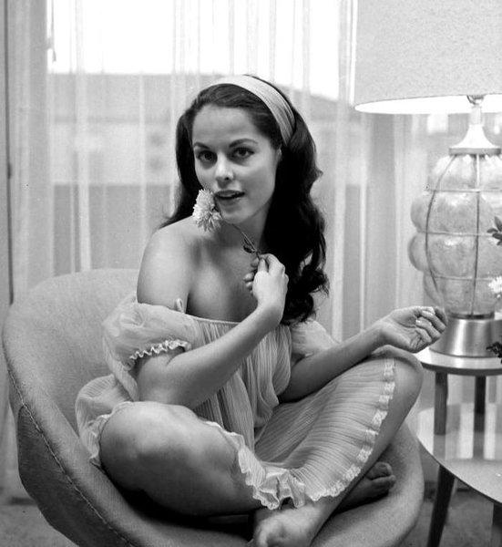 Красавица брюнетка из 60-ых Дайан Уэббер