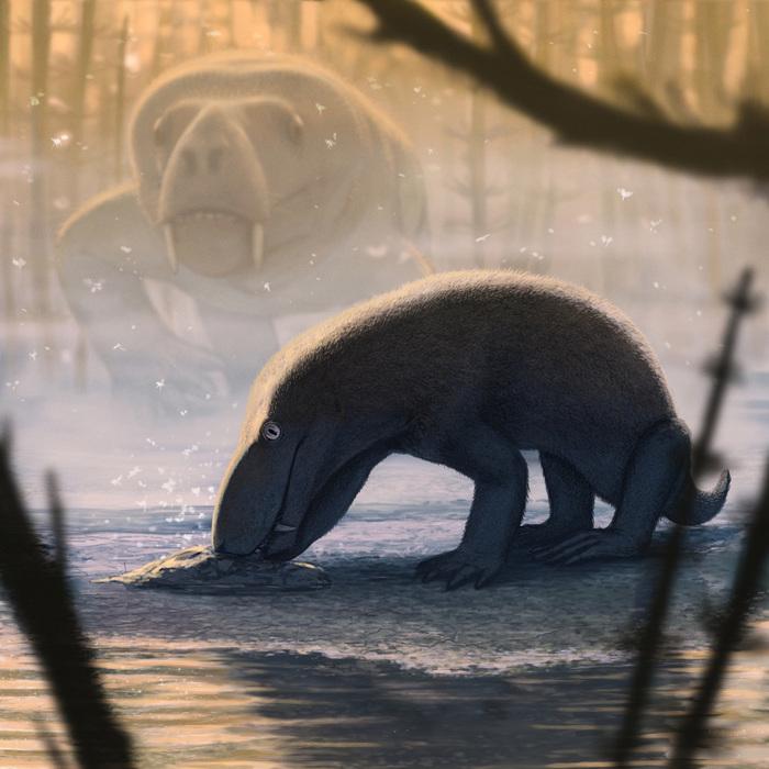 Как выглядел звероящер, останки которого нашли в Кировской области