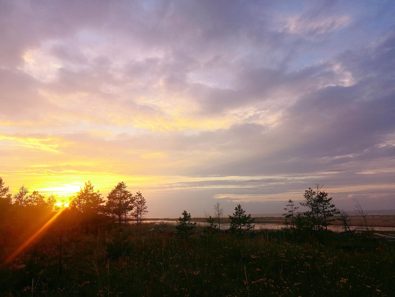 Шум Белого моря звучит как колосья золотой пшеницы