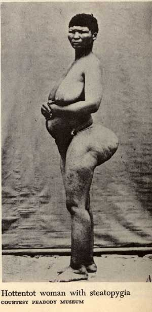 ножки такая большие ягодицы большая грудь узкая талия африканские племена бушмены проводит для девочек