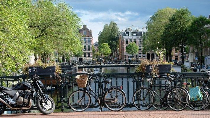 Голландское расследование носит необъективный характер