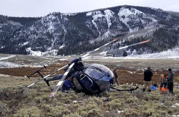 Лось в США сбил вертолет