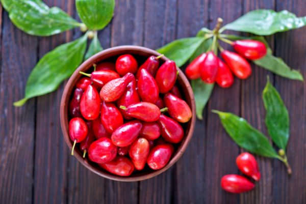 Недооцененная ягода для сада. А ведь это настоящая витаминная бомба!