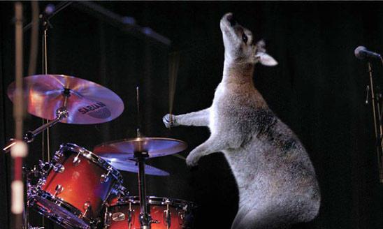 Уличные барабанщики