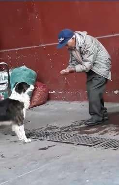 Есть еще хорошие люди! Мужчина всего лишь напоил дворнягу водой, но о нем говорит весь мир