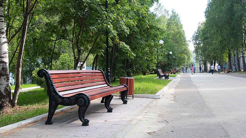 красивые скамейки на улицах спб фото волнистый, из-за чего