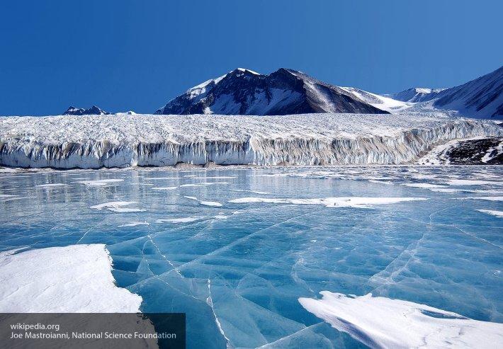 Ученые обнаружили жизнь подо льдами Антарктиды