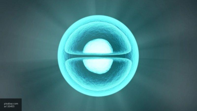 Ученые провели исследование отдельных атомов при помощи МРТ