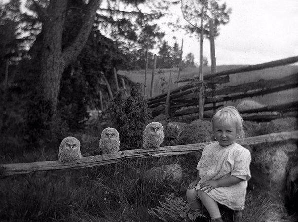 Девочка и три совенка, 1925 год знаменитости, исторические фотографии, история, редкие фотографии, фото