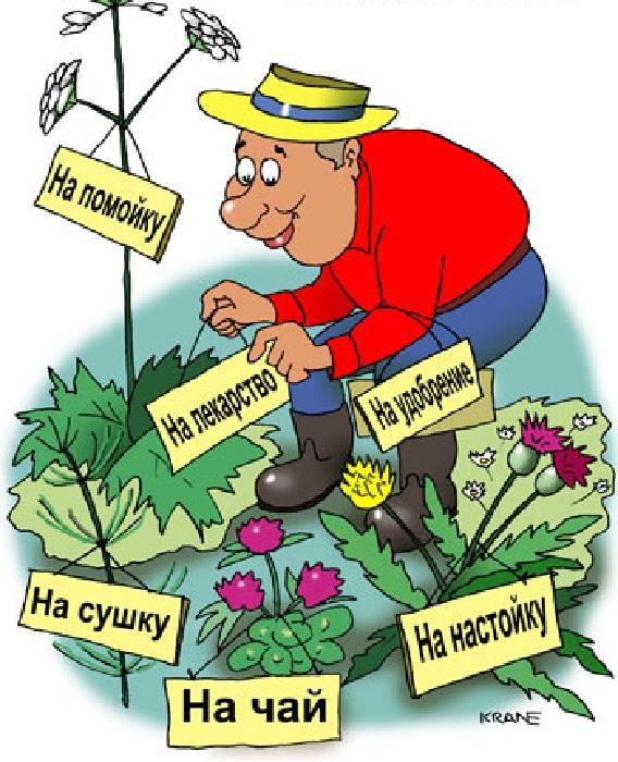 «Ах ты дача, моя дача...»: Поэты, художники, скульпторы о даче и дачниках с юмором дача,позитив,сад и огород,юмор
