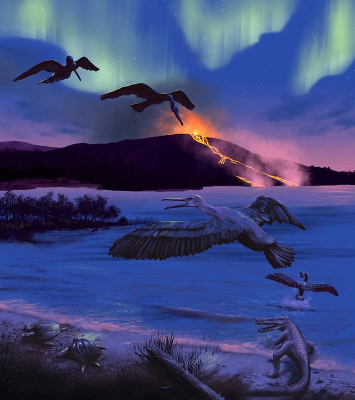 Изучение древних мошек показало, что птицы освоили Арктику уже в мезозое Янтарь, палеонтология, наука, птицы, мезозойская эра, интересное, копипаста, elementyru, длиннопост