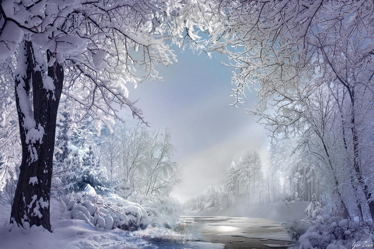 Очарование зимнего пейзажа, …